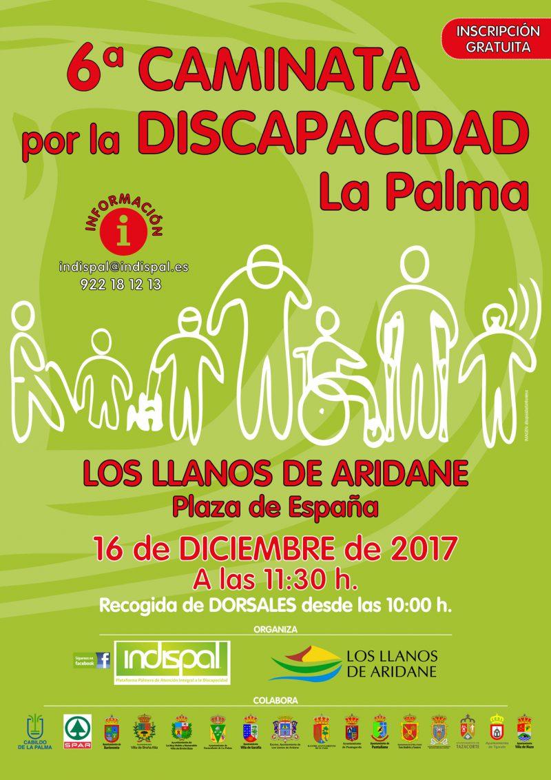 Cartel VI Caminata Discapacidad La Palma 2017